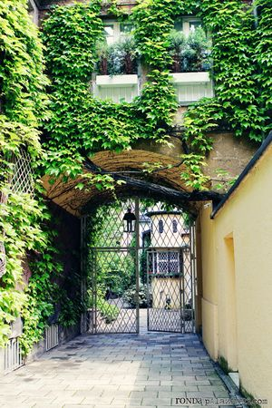 Ronda Palazzari Munich Side Street