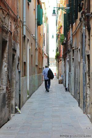 Ronda Palazzari Venice andrew