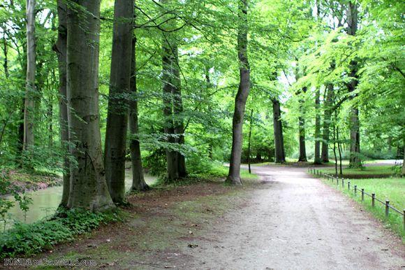 Ronda Palazzari Munich English Gardens