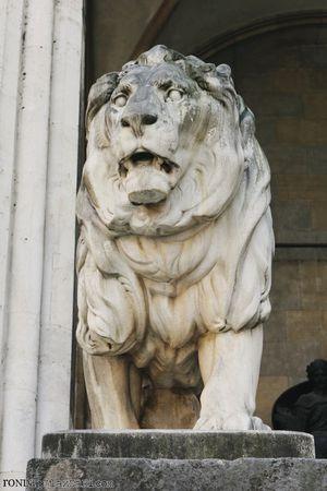 Ronda Palazzari Munich Lion