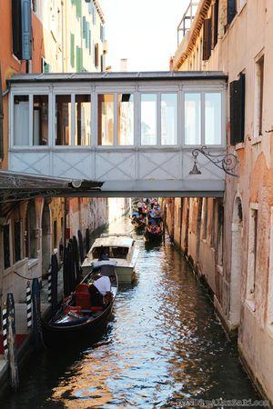 Ronda Palazzari Venice 14