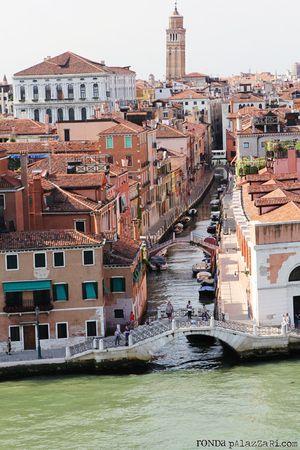Ronda Palazzari Venice 20