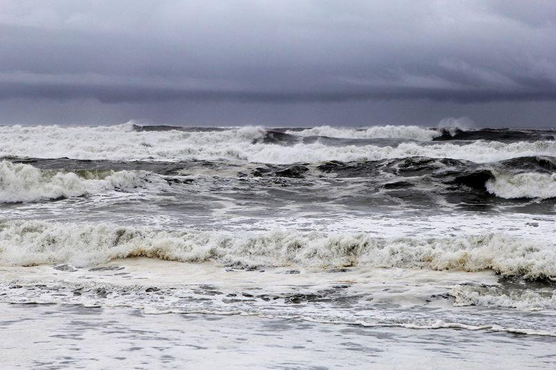 Ronda Palazzari Ocean 5