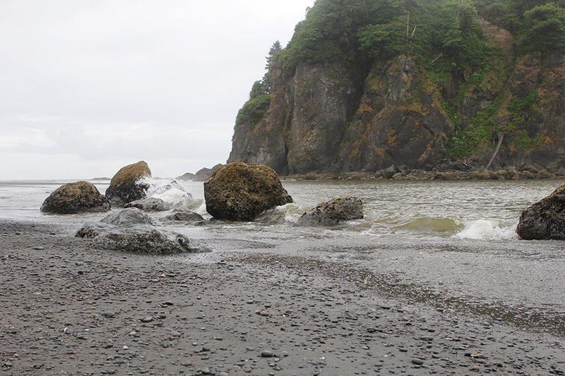 Ronda Palazzari Ocean 2