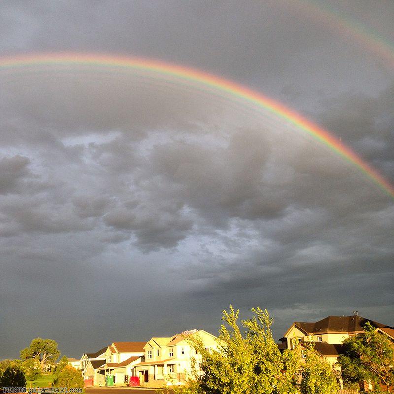 Ronda Palazzari Rainbow