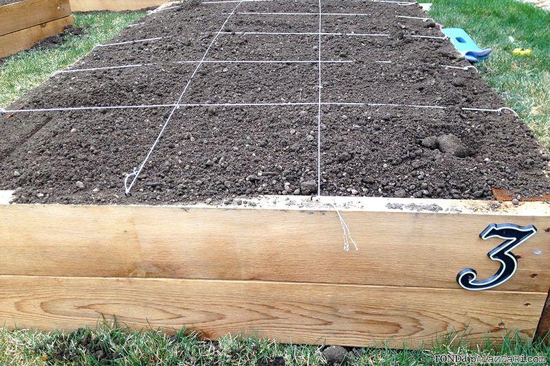 Ronda Palazzari Gardening 1