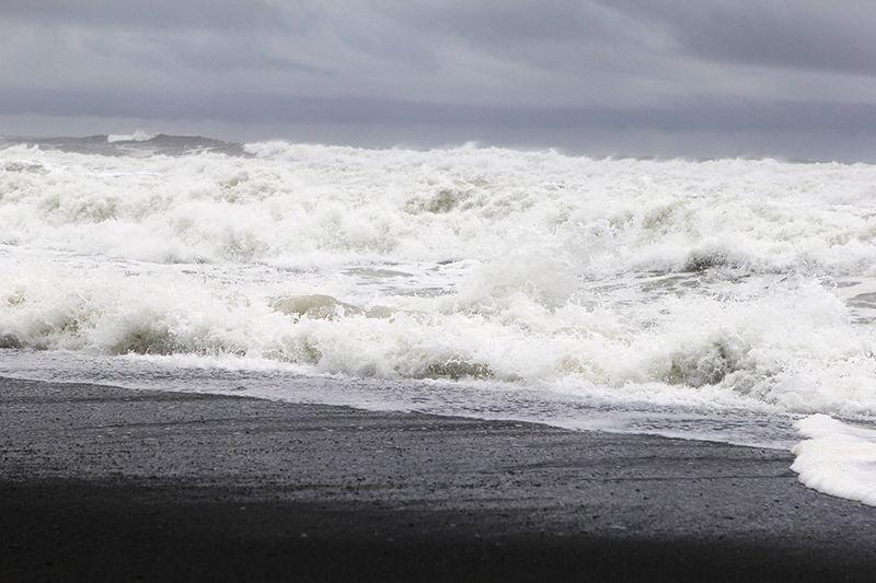 Ronda Palazzari Ocean 3