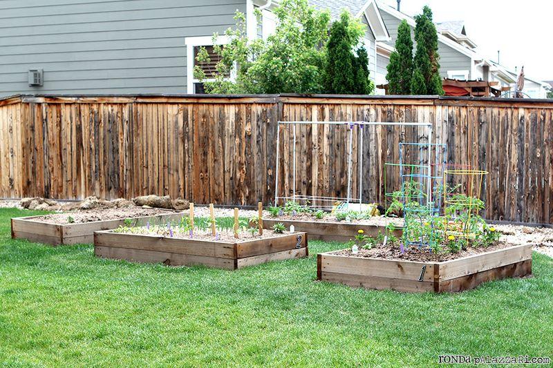 Ronda Palazzari Gardening 4