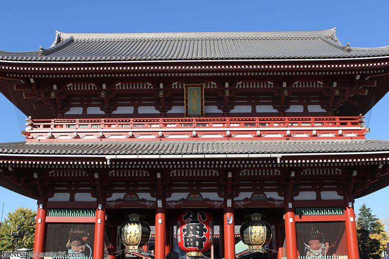Ronda Palazzari Tokyo 7