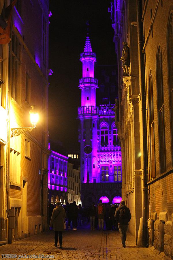 Ronda Palazzari Brussels 19