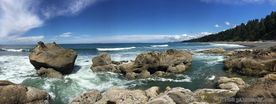 Ronda Palazzari Olympic Peninsula Beach 4 Photo