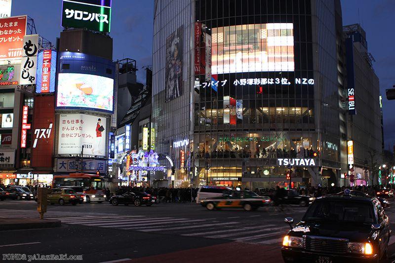 Ronda Palazzari Tokyo 19