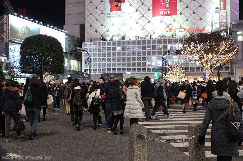 Ronda Palazzari Tokyo 23